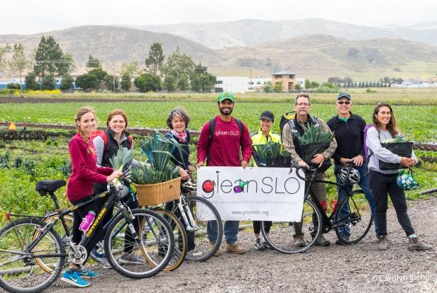 bike glean